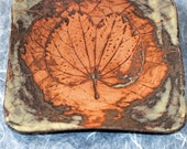 Sushi Plate Earthen Leaves and Orchid Tree