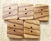 Exotic Zebrawood buttons, discs, wood slices - set of 5