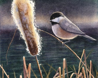 Black Capped Chickadee watercolor painting print by Cathy Hillegas, 8x10, watercolor print, bird art, cat tails, gray, brown, gold, purple