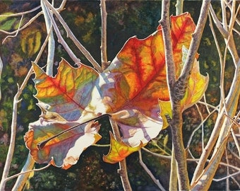 "Autumn leaves art watercolor print of an original painting by Cathy HIllegas 12x16 ""Captured Light"" red, yellow, orange, green, blue"