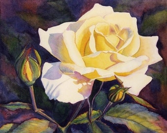 Yellow Rose Art Watercolor Painting Print by Cathy Hillegas, 11x14, watercolor floral, realism, watercolor rose, yellow art, purple, green