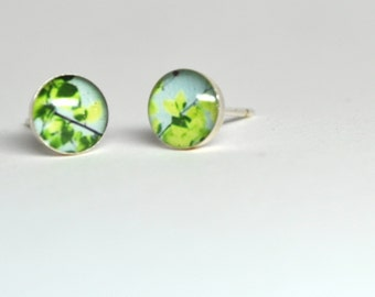 Sky Canopy- Petite Photo Studs-Sterling Silver Earrings