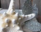 1/2 OFF SALE - starfish hair adornment - Beach Goddess