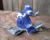 blue jay bird hair clips - Twin Jays