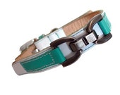 XXL Loki Puppy Leather Dog Collar White and Turquoise