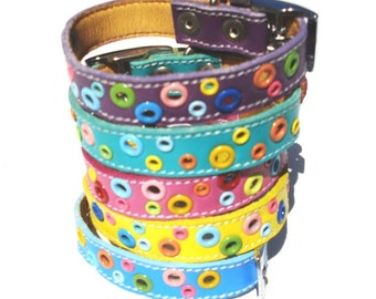 Cool Cat Collar
