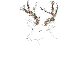 Deer, flowers. 8x10 print