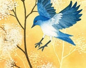 Blue Bird In Flight - 8x10 archival watercolor print by Tracy Lizotte