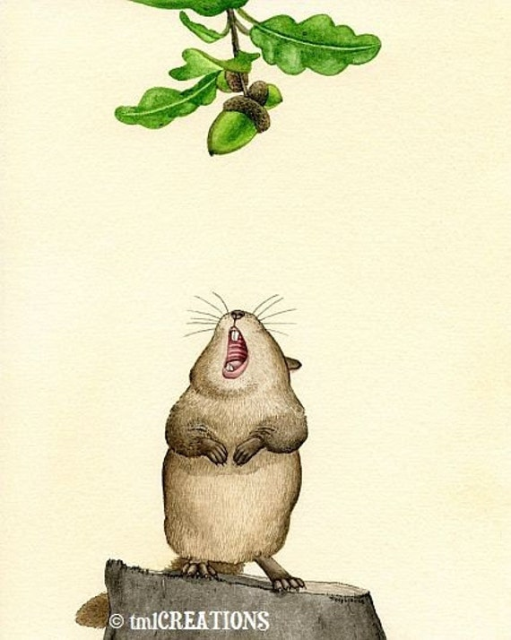 Yummy Acorn - 8x10 archival watercolor print by Tracy Lizotte