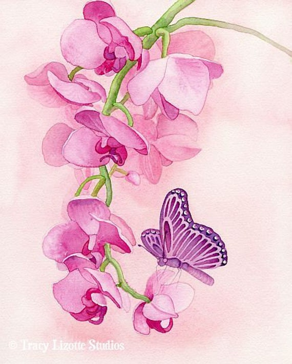 Pink Butterfly - 8x10 ORIGINAL watercolor painting by Tracy Lizotte