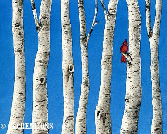 Birch Trees - 11x14 archival watercolor print by Tracy Lizotte