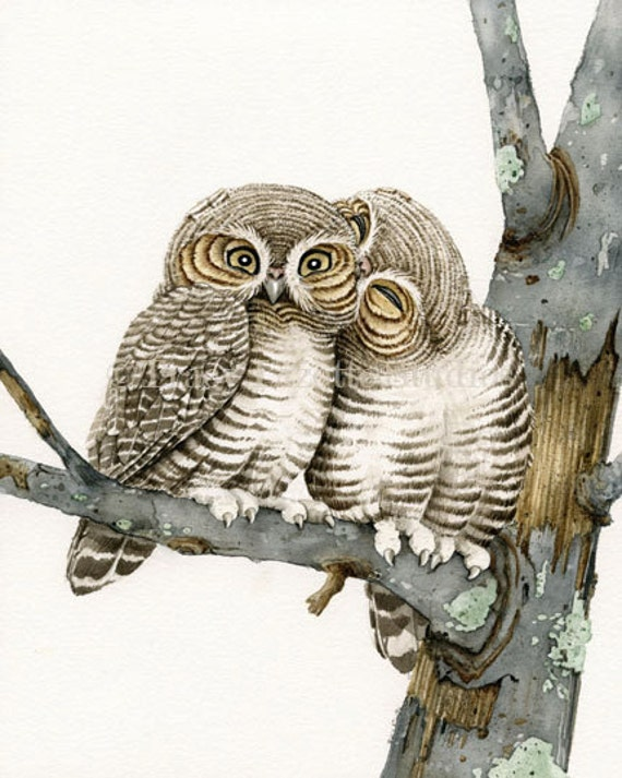 Owl Smooches - 11x14 archival watercolor print by Tracy Lizotte
