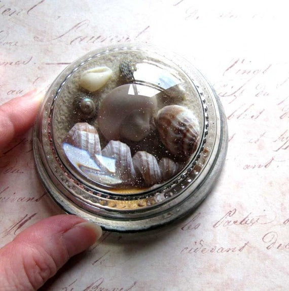 25% OFF Vintage 1970s Seashore Shells Sand Paperweight