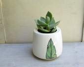 SALE 15% off // Green succulent plant in ceramic pot with a green bird feather design,  garden succulent planter