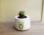 SALE 15% off // Green succulent plant in ceramic pot with a yellow owl design,  garden succulent planter
