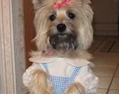 Doggie Dorothy Costume