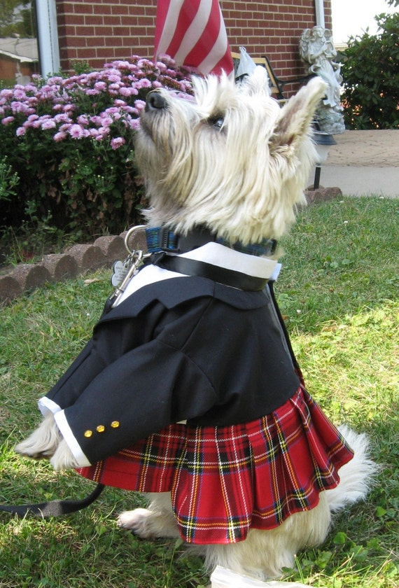 Formal Scottish Kilt for Dogs