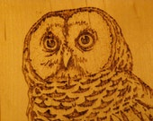 Home Decor --- Owl Wood Burned Plaque