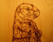 Home Decor --- 9x12 Gopher Wood Burned Plaque