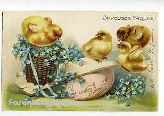 1903 - CHICKS Family, HUMOUR, FLOWERS, Vintage Embossed Postcard