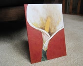 """Calla Lily 1 Painting 5""""x7"""""""