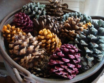 Scented Pinecone Firestarters 6pk
