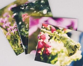 Spring Notecard Set No. 1