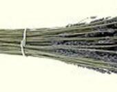 Organic Lavandin Field Bundle - 16 in -18 in. Dried Purple Bouquet