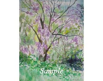 Spring Wisteria in Watercolor