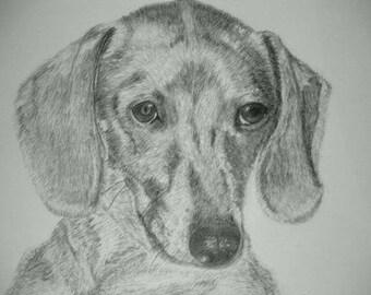 Custom Pet Portrait of Your Dog