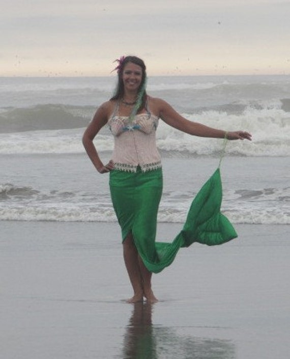 Mermaid Costume with sea shell top and corset