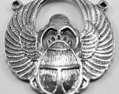 Flat Scareb Beetle - 2 bails Australian Pewter AF290