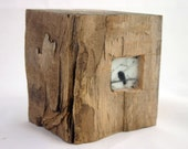 Hiding places - The small blackbird - original encaustic mixed media carved in reclaimed barn wood