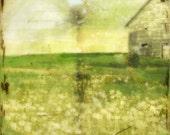 The field - mixed media encaustic artwork