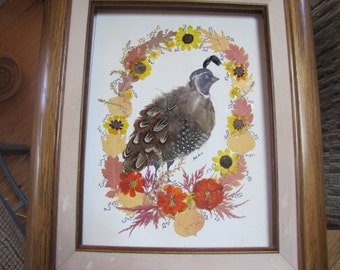 pressed flower and feather collage  framed
