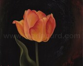 Daydream Tulip - Original Oil Painting on Wood 8x8