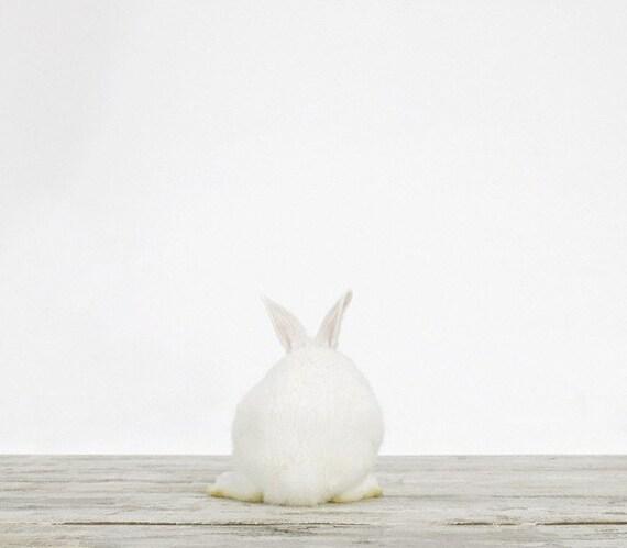 Baby Bunny No. 3, 7 x 8 Fine Art Print