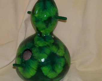 Bird House Gourd Evergreen