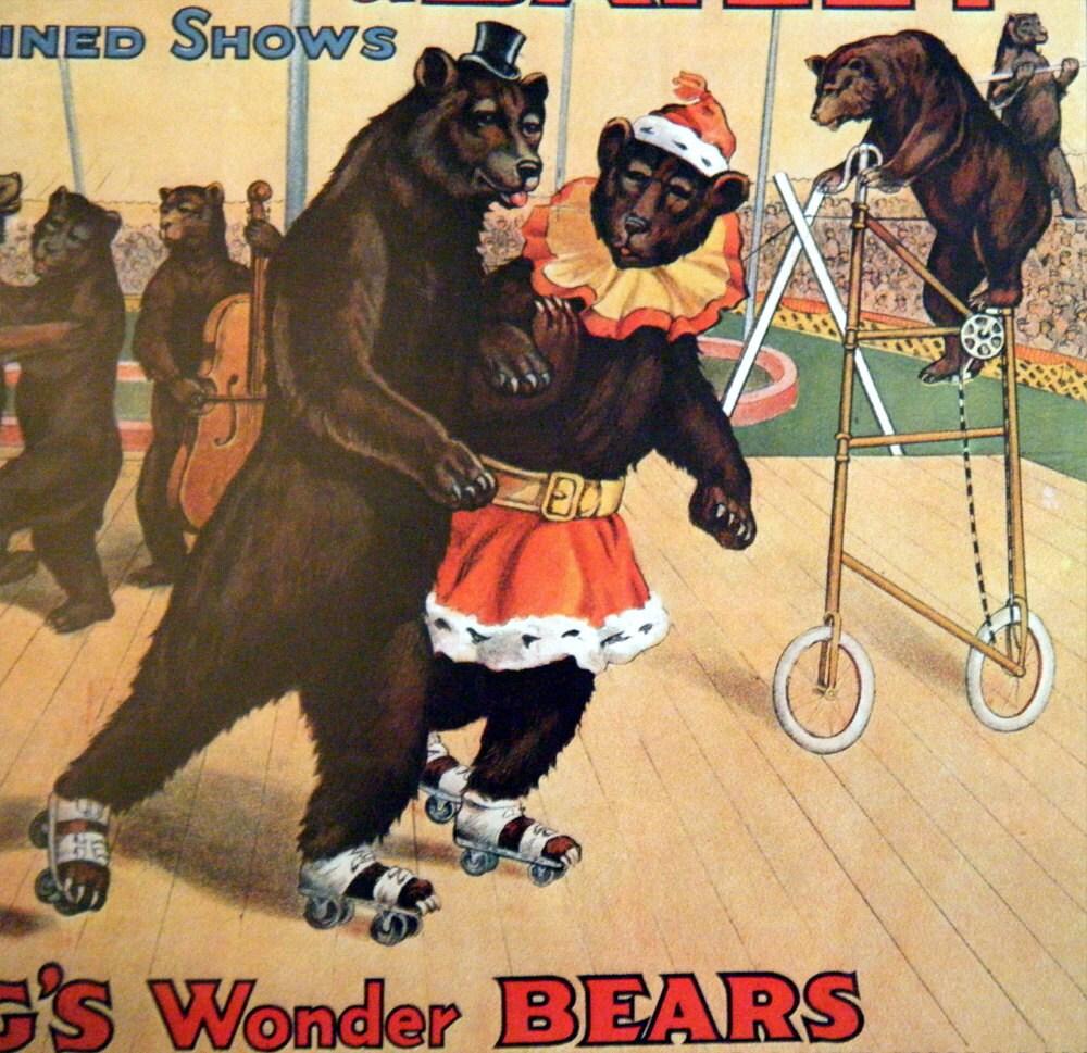Dancing circus bear-5720