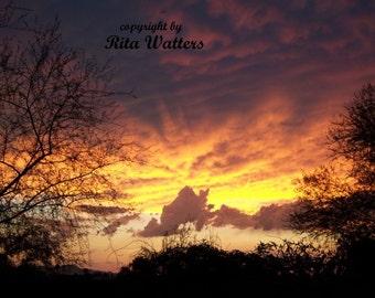 Arizona Sunset Silhoutte  8x10 Color Photo