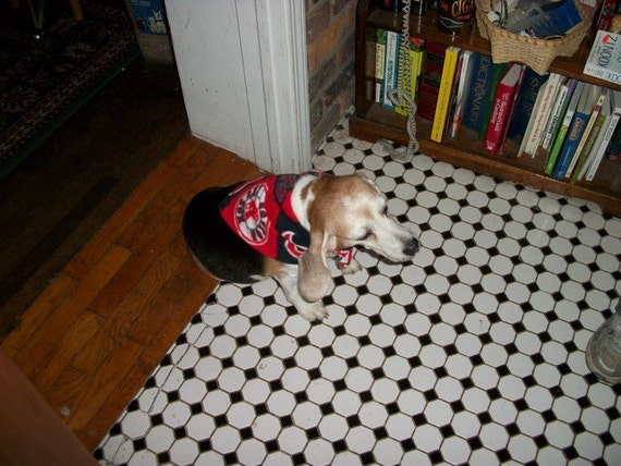 Boston Red Sox dog scarf, medium