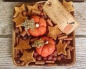 Autumn Harvest Pumpkins and Grubbied Stars