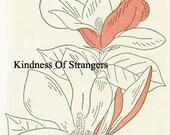 Magnolia Blossom Botanical Print Digital Sheet Digital Download Print Image Transfer