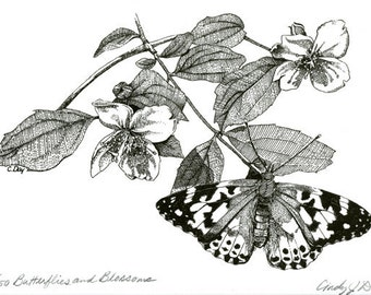 Butterflies and Blossoms Botanical 8x10 Pen and Ink Print