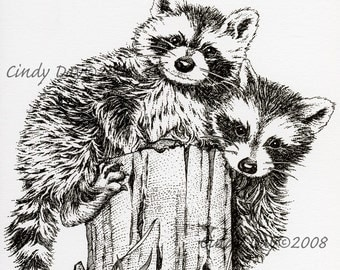 "Racoon Friends Pen and Ink Print (8"" x 10"") ""Randy and Fred"""