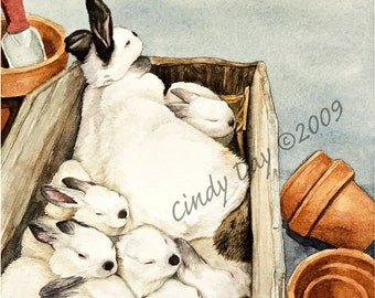 "Bunny Rabbit and Babies Giclee Print ""Box O' Bunnies"""