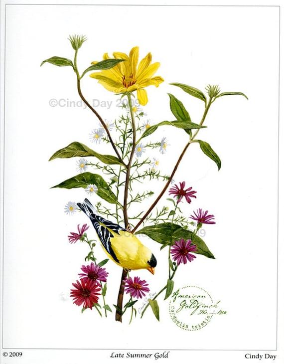 """Bird Botanical Watercolor 8""""x10"""" GicléePrint """"Late Summer Gold"""""""