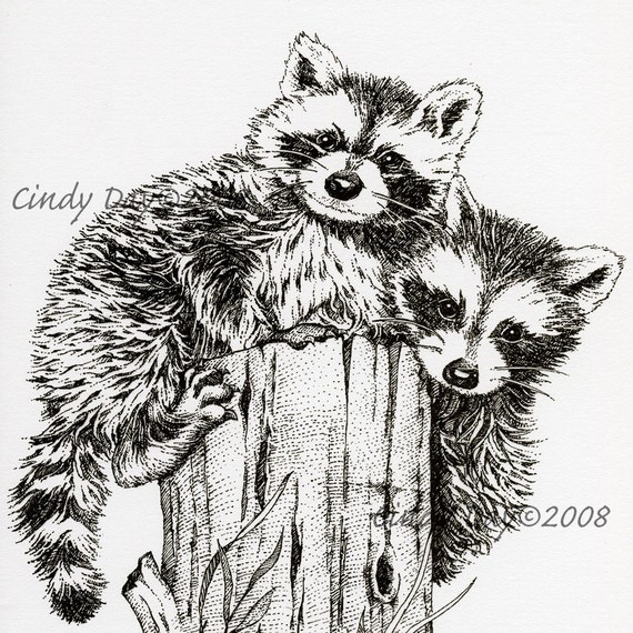 """Racoon Friends Pen and Ink Print (8"""" x 10"""") """"Randy and Fred"""""""