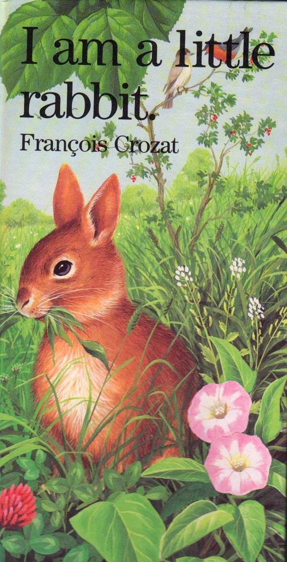 I am a little rabbit