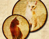 Rescued Cats Digital Collage 1.5 Inch and 1.25 Inch Round Circle Image Combo Sheet INSTANT DOWNLOAD